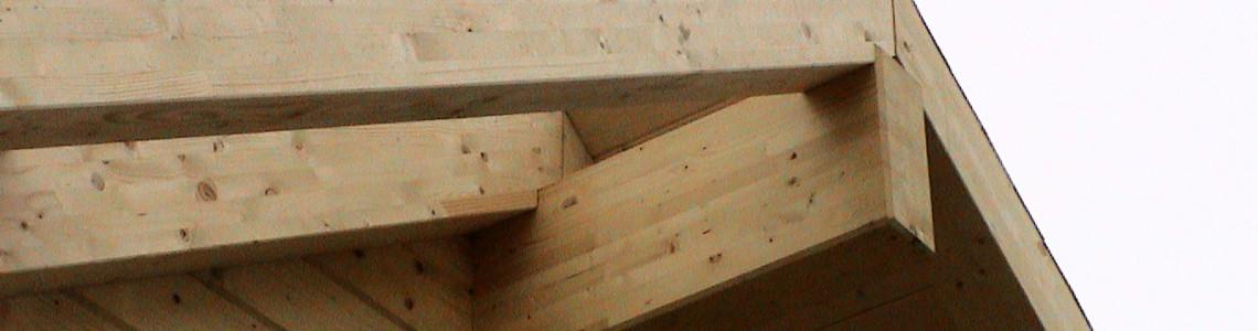 Stanovanjske in počitniške hiše iz masivnega smrekovega lesa (brunarice)