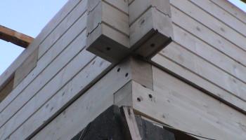 Masivne lesene hiše - brunarice / konstrukcijske rešitve